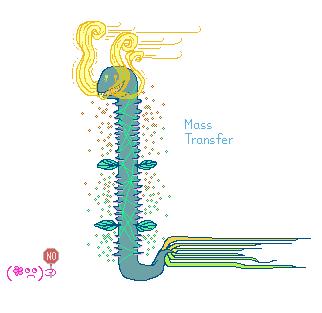 NoMassTransfer